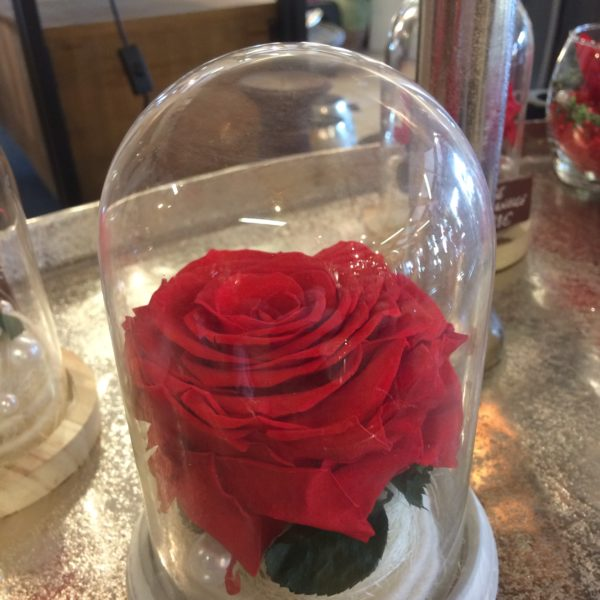 cloche rose eternelle rouge gros bouton