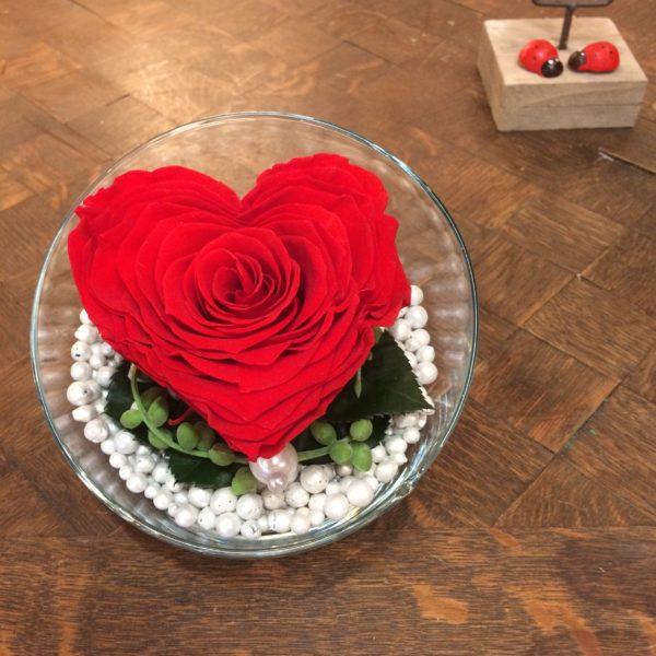 rose eternelle coeur